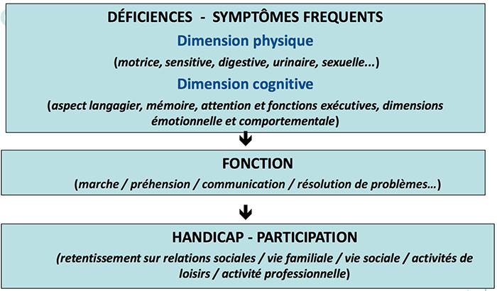 neurologique2