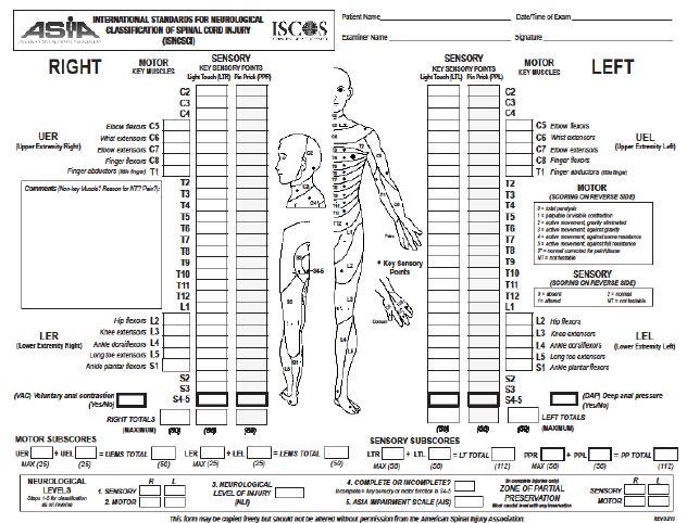 echelle-neurologique