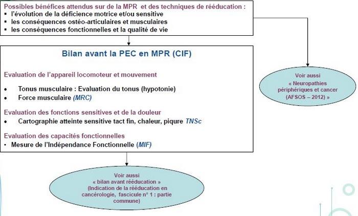 neuropathies-peripheriques